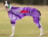 RACING-SUIT-PRINTED-SWIRL-PURPLE-WHITE