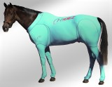 EQUINE SUIT AQUAMARINE