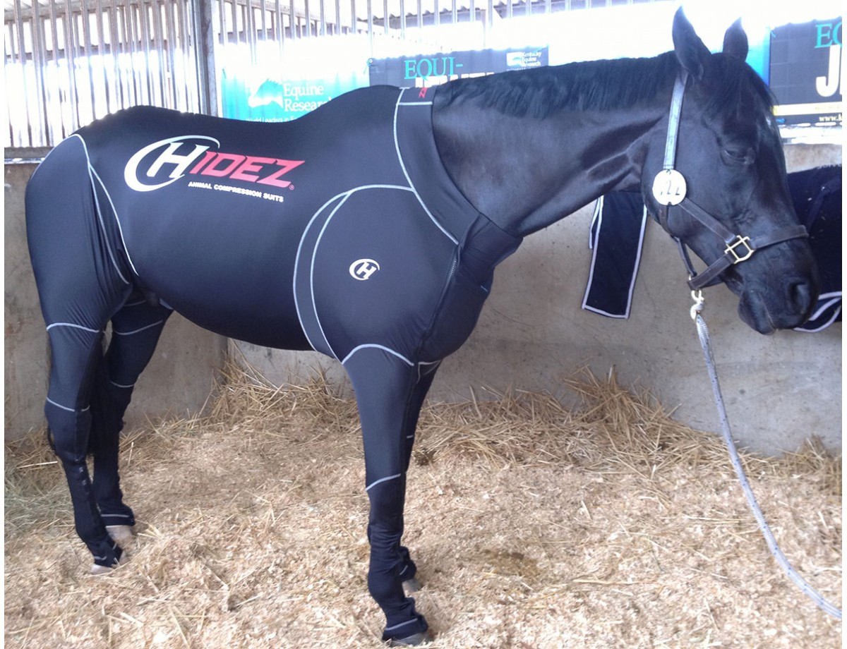 EQUINE SUIT BLACK